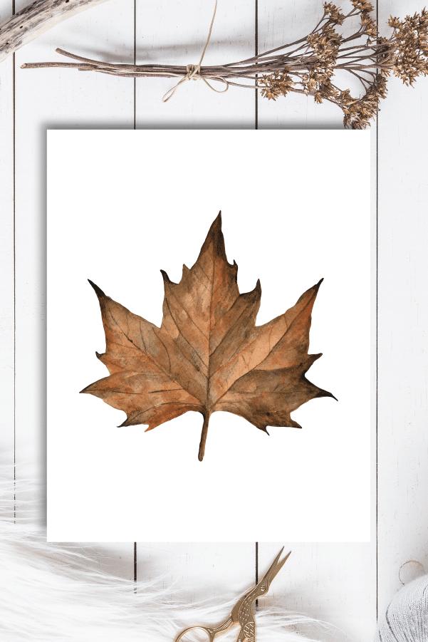 Free Fall Printables Farmhouse Watercolor Maple Leaf