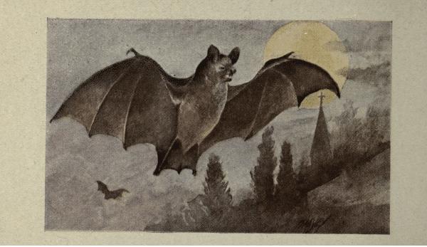 Free antique halloween art
